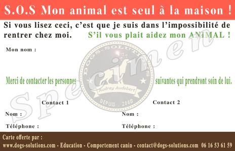 Carte pour porter secour a votre animal en cas d'urgence