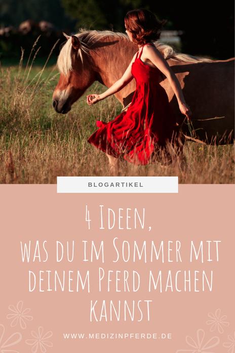 3 Ideen, was du bei Hitze im Sommer mit deinem Pferd machen kannst, ohne reiten