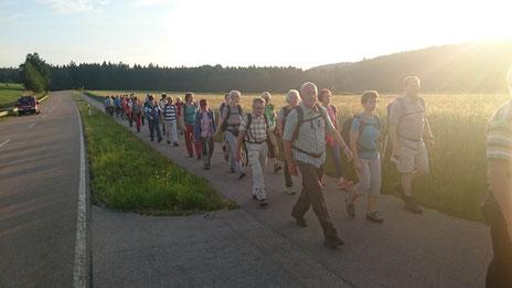 Fußwallfahrt 2016 (zwischen Krickelhof und Pursruck)