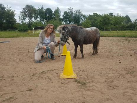 Dualini - das Geitner-Programm für Kinder: sicherer Umgang mit Pferden und Ponys am Boden und aus dem Sattel