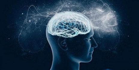 Menschliches Gehirn künstlerisch dargestellt