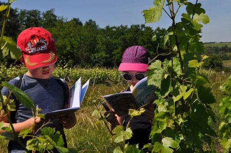 visite-de-vignoble-cave-troglo-en-famille-avec-des-enfants-Vouvray-Tours-AmboiseTouraine-Vallee-Loire-Rendez-Vous-dans-les-Vignes-Myriam-Fouasse-Robert
