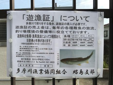 遊漁証について