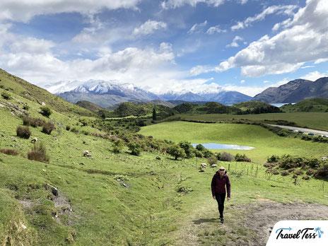 Roys Peak hike in Wanaka
