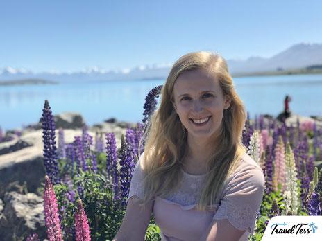 Lupinen bloemen in Lake Tekapo