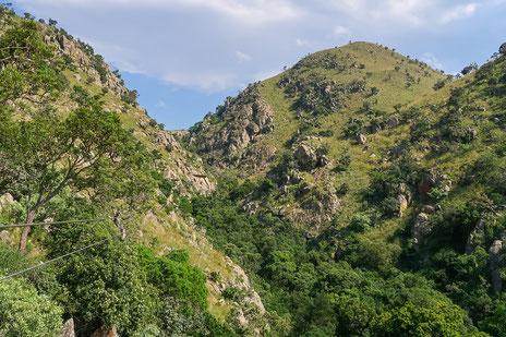 Die Kulisse für die Canopy-Tour im Malolotja National Park