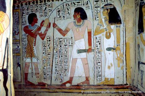 TT 96B - Sennefer - Vallée des nobles - Egypte