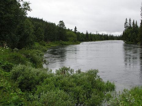 An der Tya - Nebenfluss der Nea.