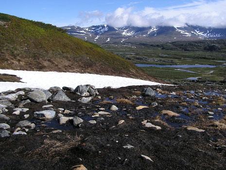 Hoch oben im Fjell - unvorstellbar die Ruhe, einfach still und schön.