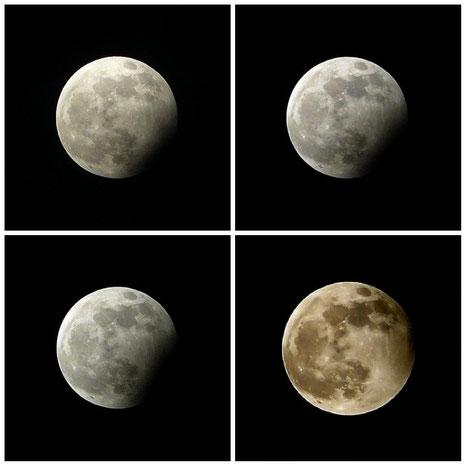 Die partielle Mondfinsternis vom 31.12.2009 (19:56, 19:59, 20:10, 21:26)