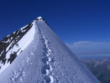 Gipfelwärts zum Eiger