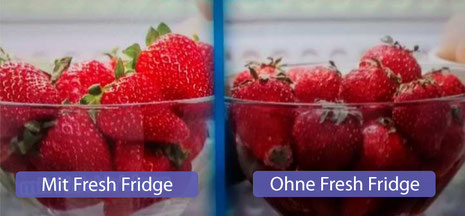 Nanoprotect Fresh Fridge - Erdbeeren im Vergleich
