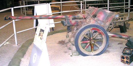 Pak 50mm mit 3-Farben-Tarnung