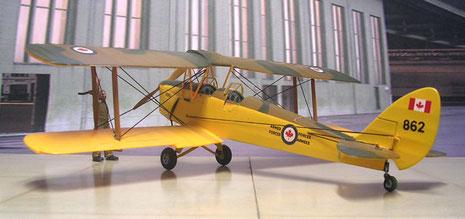 Die gelbe Unterseitenlackierung im Kontrast zum Tarnverlauf machen die kleine Tiger Moth sehr attraktiv.