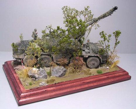 """Mit ein paar Steinen und etwas Geländetiefe verschwindet die riesige """"Dana"""" schon im Unterholz."""