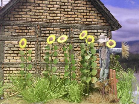 Das angrenzende Sonnenblumenfeld mit Vogelscheuche.