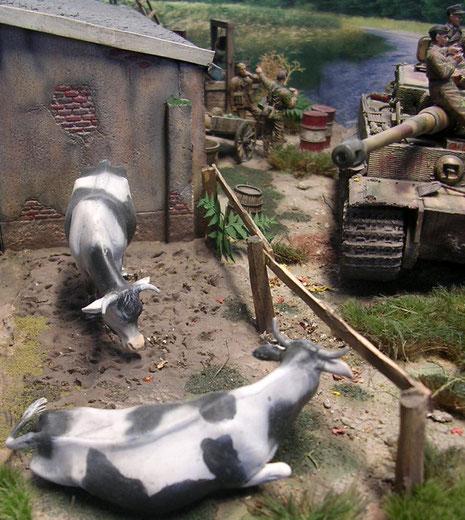 Die Kühe haben die Ruhe weg, bis das Panzermonster wohl den Motor startet:-)