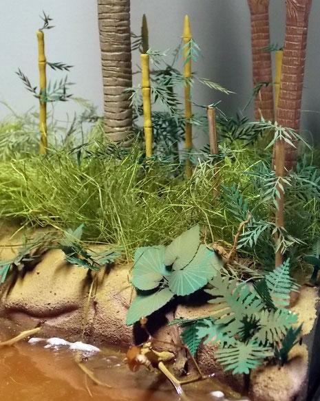 Bambussproßen sprießen aus dem Bodenbewuchs.