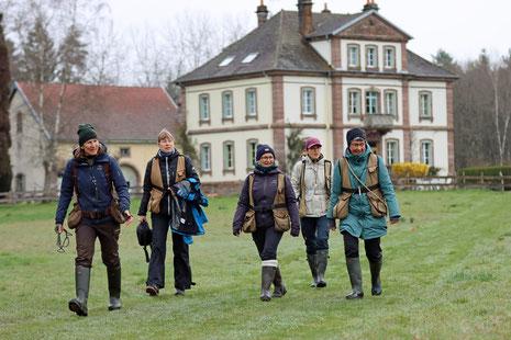 Wasserlandschaft in den Vogesen, Juni 2013