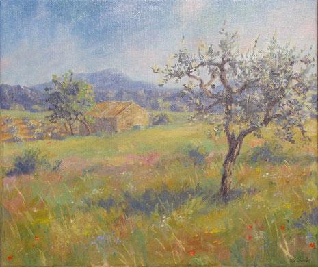 Le grand Béssillon au fond de la plaine de Tavernes, un jeune olivier en premier plan et entre les deux un cabanonentiché d'un amandier et un champ d'olivier