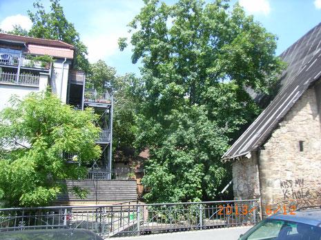 Neumühle und Nachbarhaus
