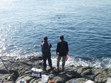 みかちゃんはアキちゃんに泳がせ指導中。海は軽くナブラです。