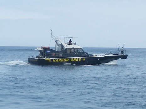 お世話になる渡船は、串木野港出港のハーバーワンです。