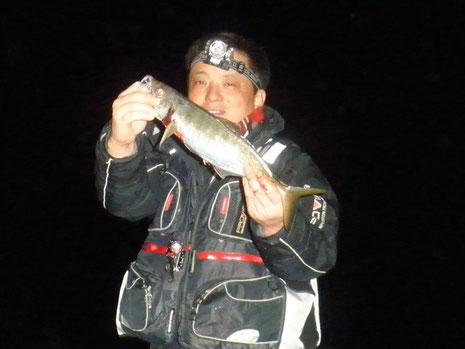 夜釣王のアジ