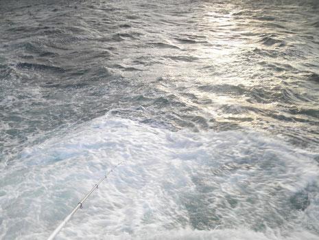 海もこんなになってきたので11時終了