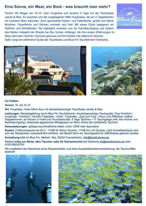 Für eine größere Ansicht klicke die Ausschreibung an. Du gelangst auf die Website des Bluefins!