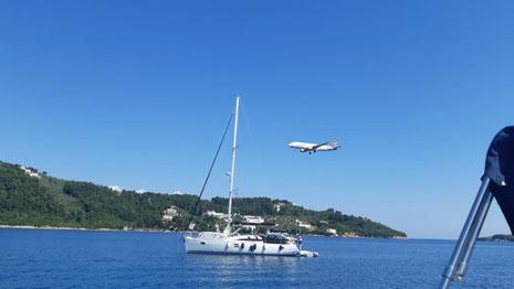 Condor im Landeanflug gleich neben dem Hafen