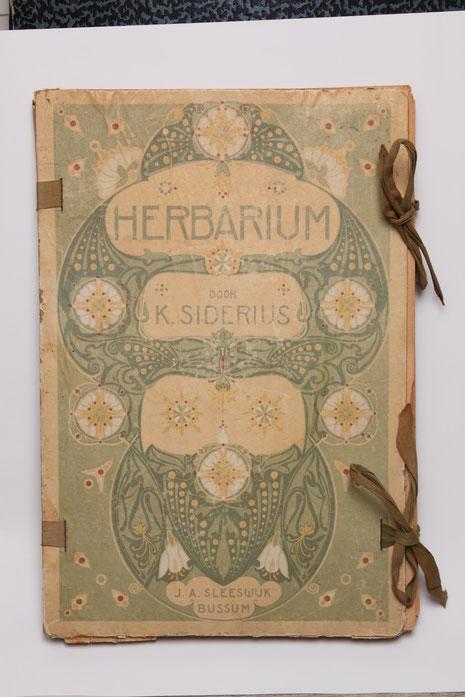 herbariummap  collectie herbarium frisicum