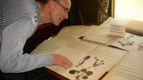 Karst Meijer toont joods herbarium tijdens een tentoonstelling