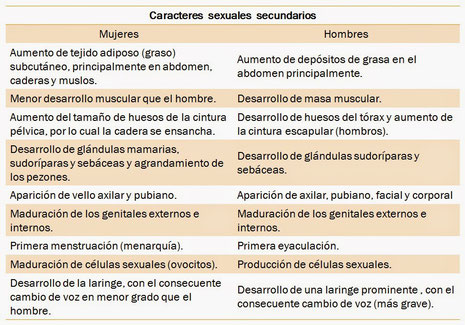 Caracteres Sexuales Web Itif Centrobiologia