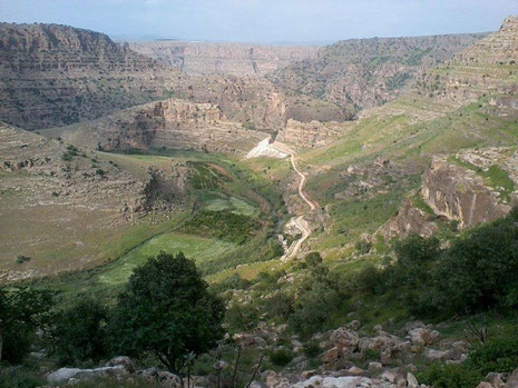 çîya ye Dorika le Bazgure