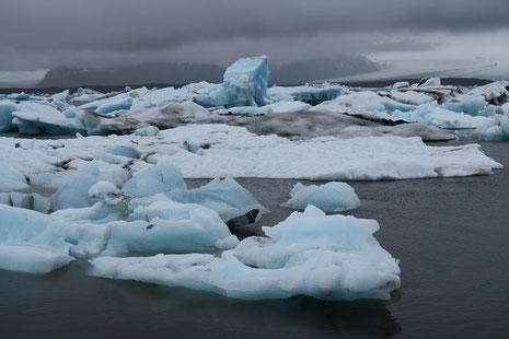 Gletscherlagune Jökulsárlón, Island, Juni 2015