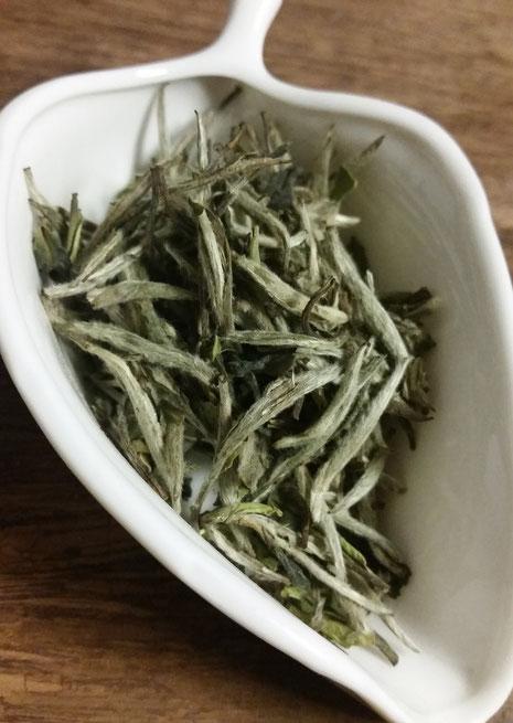 白毫銀針≪茶葉≫一部色の濃い葉も混ざっているが、産毛付きの芽の部分がほとんど