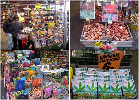 Der weltberühmte Blumenmarkt - ein Paradies für alle Gartenfreunde