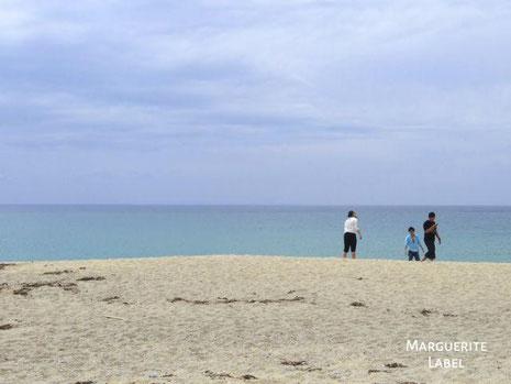 crystal beach/水晶浜