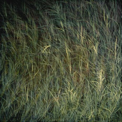 Feld, Acrylfarbe auf Nessel, 100 x 100 cm