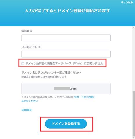 ドメイン登録フォームに情報を記入してください