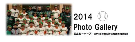 フォトギャラリー2014年版(要パスワード)