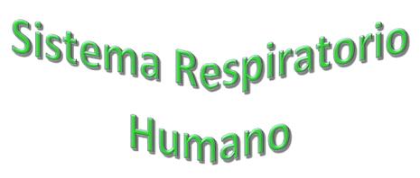 Resultado de imagen para aparato respiratorio letras