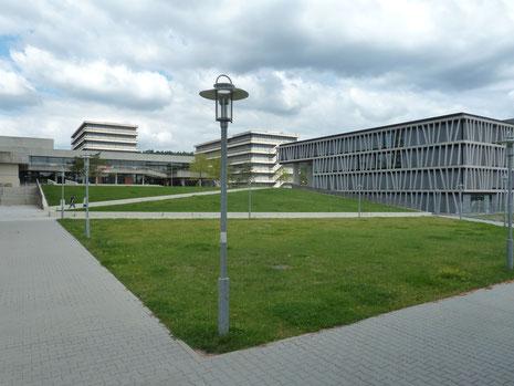 Rasen auf dem Hörsaalzentrum Morgenstelle (M. Koltzenburg)
