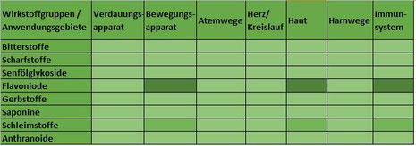Heilpflanze Sonnenhut Echinacea Immunsystem immunmodulierend entzündungshemmend Infektionskrankheiten rheumatische Entzündungen