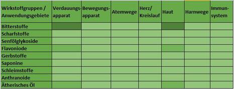 Heilpflanze Beifuß Artemisia vulgaris Bitterstoffe ätherisches Öl Flavonoide Verdauungsanregung Fettstoffwechsel Ekzeme Geschwüre Kommission E Negativmonographie