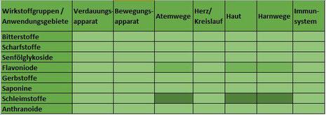 Heilpflanze Königskerze Verbascum Saponine Iridoidglykoside schleimlösend schleimhautschützend Atemwege Halsschmerzen