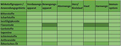 Heilpflanze Birke Betula Flavonoide Gerbstoffe ätherisches Öl harntreibend blutreinigend Harnwege Blasengrieß Entgiftung rheumatische Arthritis Haut