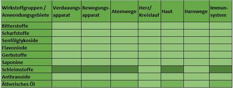 Heilpflanze Weihrauch Boswellia Boswelliasäuren entzündungshemmend Colitis ulcerosa Morbus Crohn Indischer Weihrauch