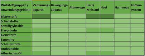 Heilpflanze Tausendgüldenkraut Centaurium erythraea Bitterstoffe Flavonoide ätherisches Öl verdauungsfördernd Gallefluss Kräftigung Rekonvaleszenz